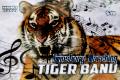 tiger band card 2020