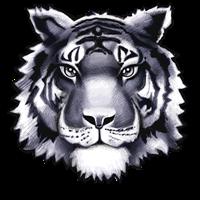 Twinsburg Mascot - Tiger
